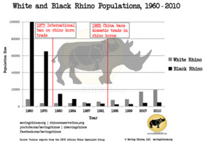 rhino-and-elephant-poaching_rhino-population